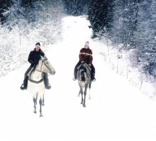 minnesota trail rides