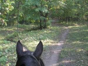 trail rides minnesota